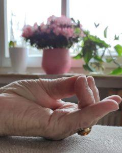 Mudra zur Unterstützung der Leber